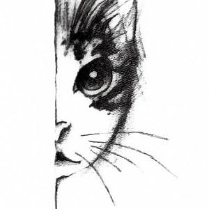 Временная татуировка «Cat»