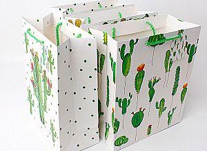 Подарочный пакет «World of cactus» средний